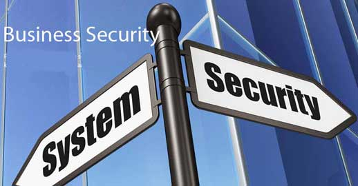 Business Security System Contractors
